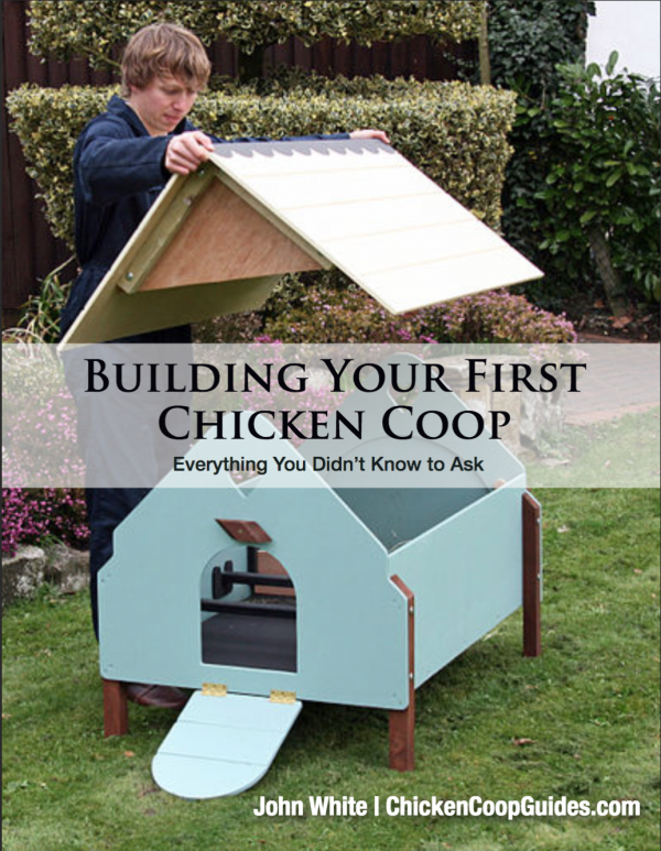 Tips to build your own chicken coop!