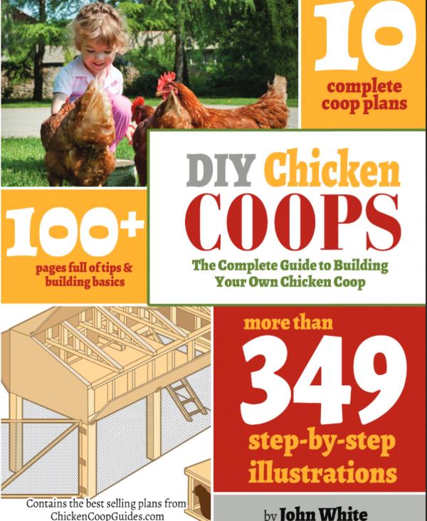 10 Amazing Chicken Coop Plans!