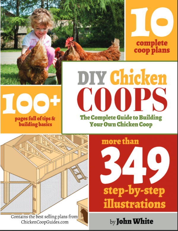 10 Amazing Chicken Coop Plans!