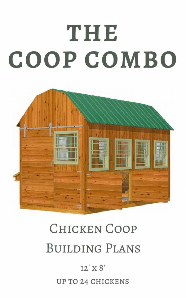 Chicken Coop Plans for up 24 Chickens