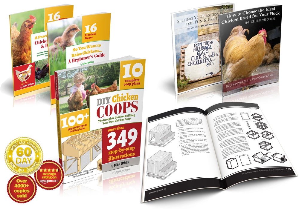 Chicken Coop Plans Bundle